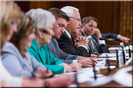 Senate Joint Public Hearing