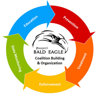 Project Bald Eagle